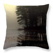 Foggy Bog Sunrise Throw Pillow