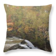 Foggy Brandywine Falls Throw Pillow