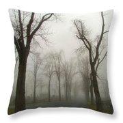 Foggy Cemetery Road Throw Pillow