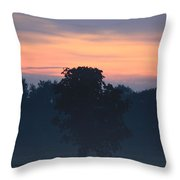 Foggy Coloured Morning Throw Pillow