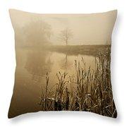 Foggy Day At Silver Lake Throw Pillow