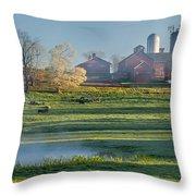 Foggy Farm Morning Throw Pillow