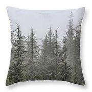 Foggy Forest Retro Series. Throw Pillow