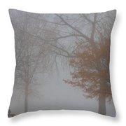 Foggy Lake View Throw Pillow