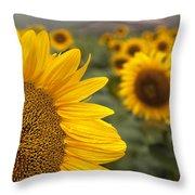 Foggy Morning At The Sunshine Farm Throw Pillow