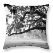 Foggy Morning On Coosaw Plantation Throw Pillow
