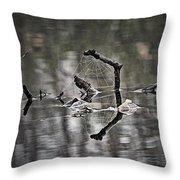 Foggy Morning Pondscape Throw Pillow