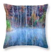 Foggy Morning Reflections Throw Pillow