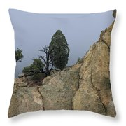 Foggy Morning Throw Pillow by Richard Smith