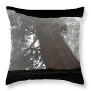 Foggy Morning Sequoias Throw Pillow