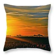 Foggy Ohio Morning Throw Pillow