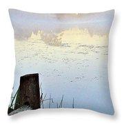 Foggy Pond Throw Pillow