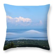 Foggy Porcupines Color Throw Pillow