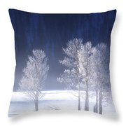 Foggy Sunrise In Yellowstone National Park Throw Pillow