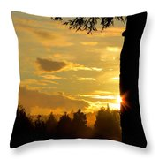 Backyard Sunset Throw Pillow
