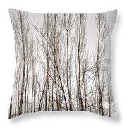 Foggy Winter Tree Fence 13271 Throw Pillow