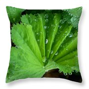 Folded Rain Throw Pillow