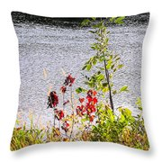 Foliage Along Iowa River Iowa City Ia Throw Pillow