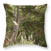 Foliage Art Throw Pillow