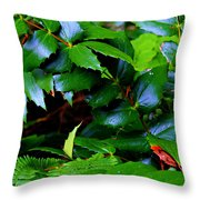 Foliage N Such Throw Pillow
