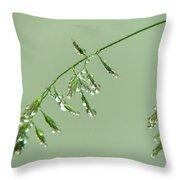 Foliage On Mount Pilatus Throw Pillow