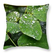 Foliageworks 2 Throw Pillow