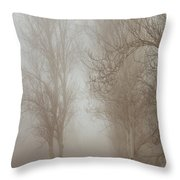 Follow It And Know Your Forests Throw Pillow