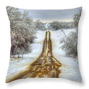 Follow The Brown Throw Pillow