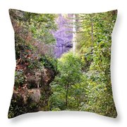 Follow The Path Throw Pillow