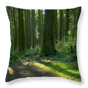Follow The Red Marker Throw Pillow