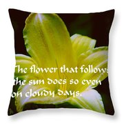 Follow The Sun Throw Pillow