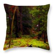Follow The Trail Throw Pillow