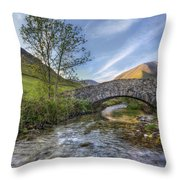 Follow Your Bliss Throw Pillow by Evelina Kremsdorf