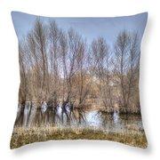 Folsom Dried Pond  Throw Pillow
