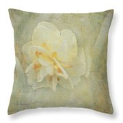 Fond Memory Throw Pillow