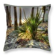 Fontainebleau Shore Throw Pillow
