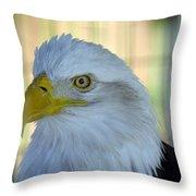 Fontana Eagle Portrait 4 Throw Pillow