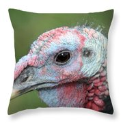 Fontana Turkey Portrait Throw Pillow