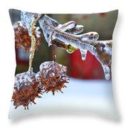 Fonthill Throw Pillow