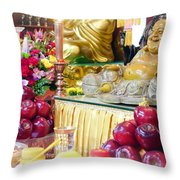 Food Offers Throw Pillow
