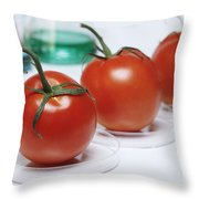 Food Research Throw Pillow