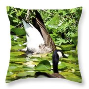 Food Too Dive For Throw Pillow