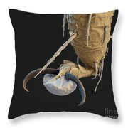 Foot Of A Bat Tick Sem Throw Pillow