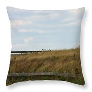 Footbridge Through The Dunes Throw Pillow