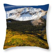 Foothills Of Gold Throw Pillow