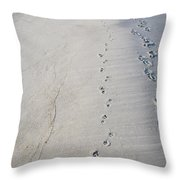 Footprints And Pawprints Throw Pillow