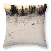 Footprints In Fresh Snow Throw Pillow