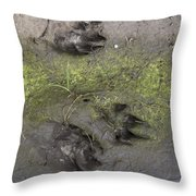 Footprints Of A Large Dog In The Mud Netherlands Throw Pillow