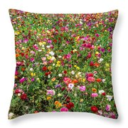 For As Far As The Eye Can See Throw Pillow