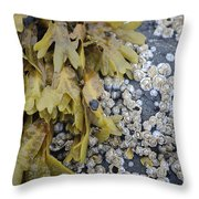 For Awhile Throw Pillow
